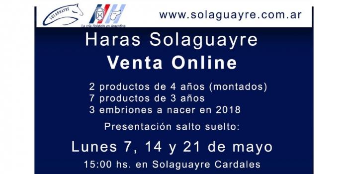 Haras Solaguayre Venta onLINE Haras Solaguayre presenta productos para su venta por internet, venta directa sin gastos extra, que dará oportunidad a todos aquellos interesados en la compra, sin importar el lugar geografico donde se encuentren.